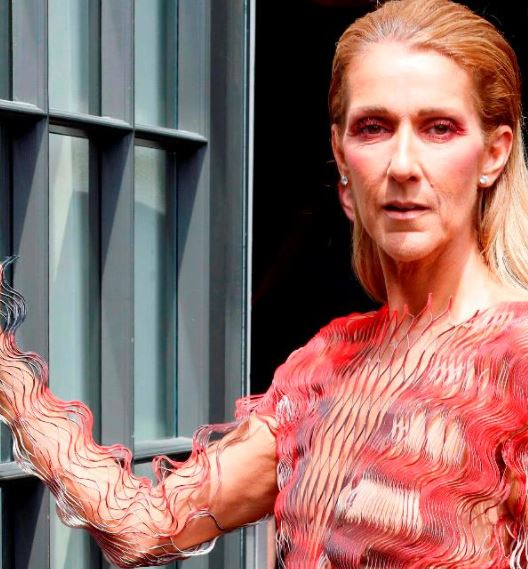 celine dion weight loss 7